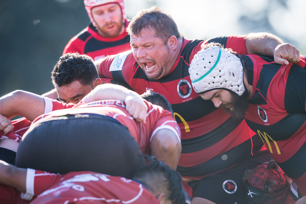 Club XVs numbers are on the up. Photo: RUGBY.com.au/Stuart Walmsley