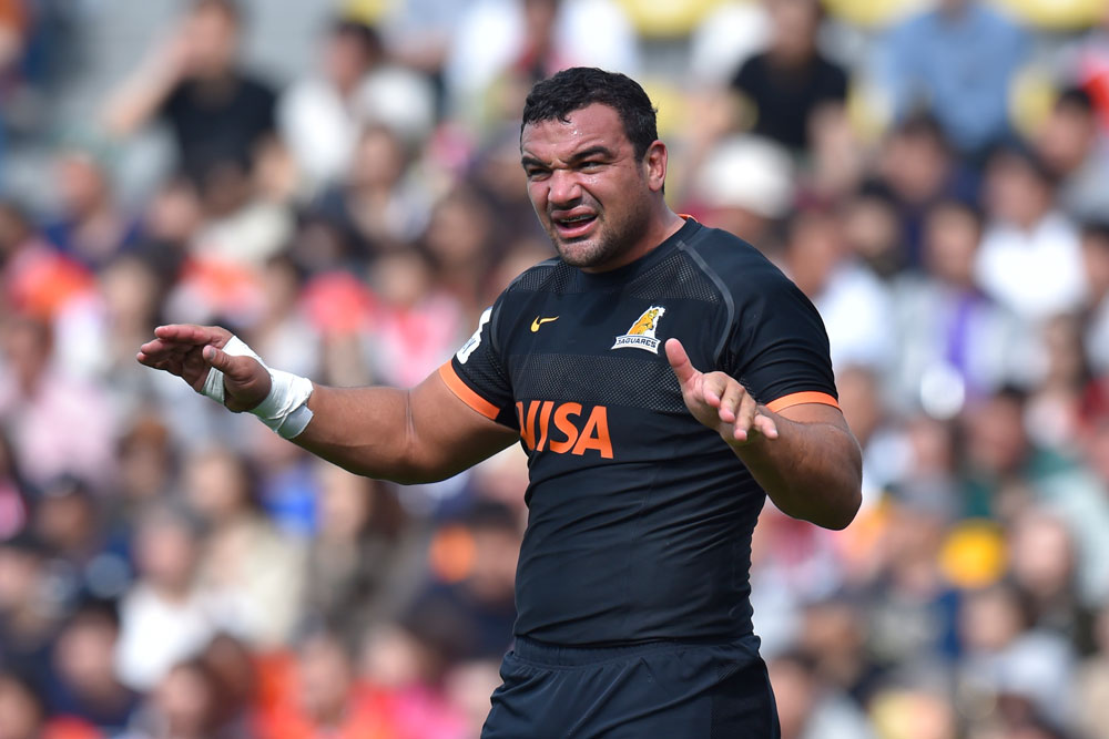 Creevy says there is still room for Argentina to improve. Photo: Getty Images