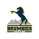 Brumbies Media