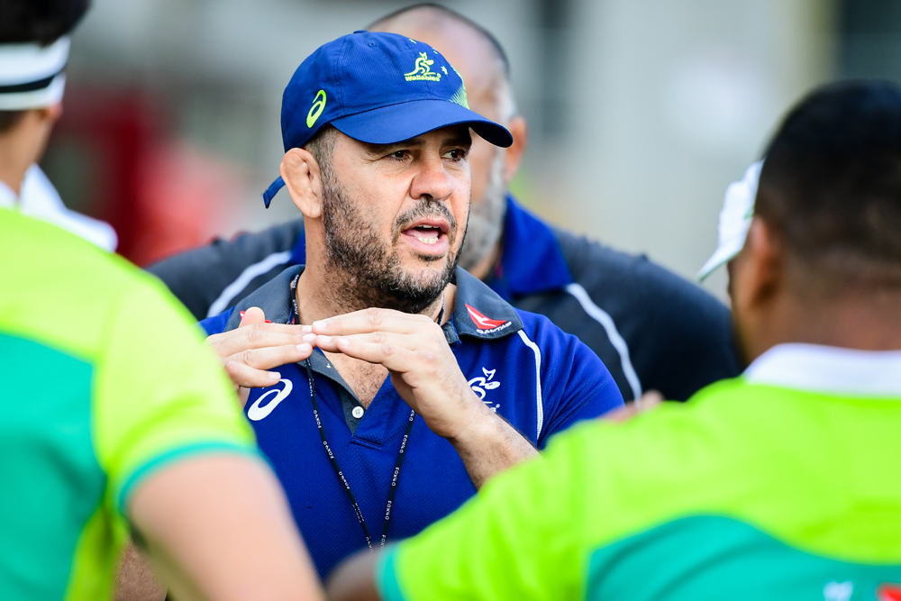 Michael Cheika has played down reports that he is in talks with Gloucester. Photo: RUGBY.com.au/Stuart Walmsley